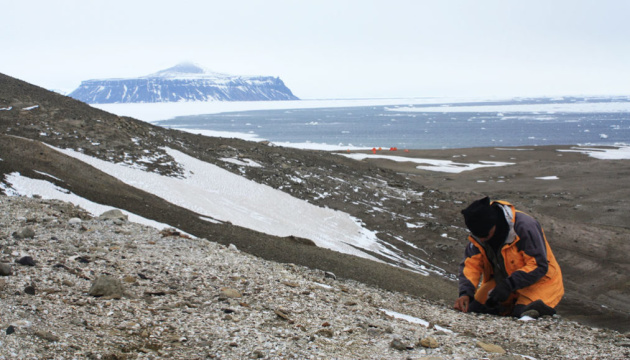 Photo of В Антарктиде впервые нашли останки земноводных
