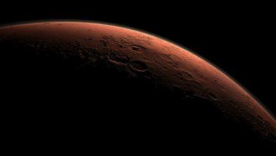 Photo of Маск сказал, когда планирует отправить первую группу людей на Марс