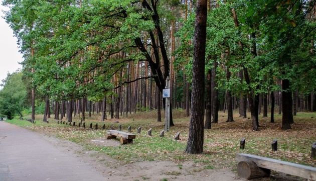 Photo of Черниговский ландшафтный парк «Яловщина» омолодился почти 900 деревьев