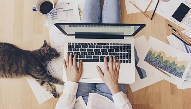 Photo of Работа дома или в офисе?