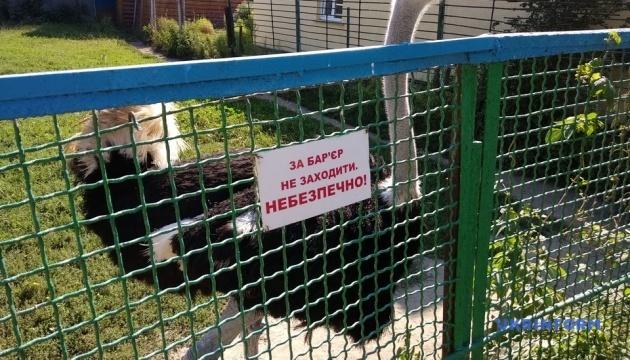 Photo of Менский зоопарк на Черниговщине возобновил свою работу