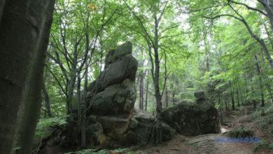Photo of Сколевские Бескиды получат почти 1,5 миллиона гривен на развитие