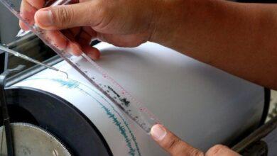 Photo of Ученые доказали, что животные могут предчувствовать землетрясения