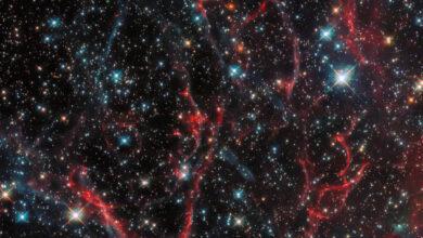 Photo of Hubble показал, что осталось от сверхновой после взрыва