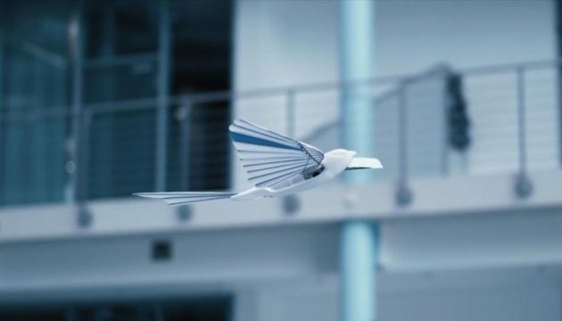 Photo of В Германии создали птиц-роботов