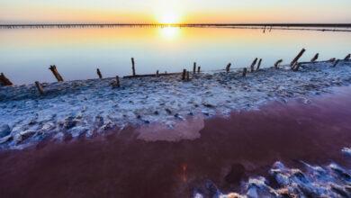 Photo of Розовое озеро: от рассвета до ночи