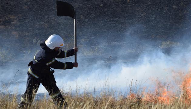 Photo of В заповеднике «Еланецкий степь» спасли от огня стадо бизонов