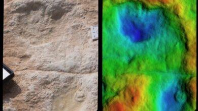 Photo of В Саудовской Аравии нашли отпечатки, которым более 120 000 лет