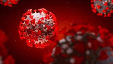 Photo of Антитела после COVID-19 хранятся более девяти месяцев