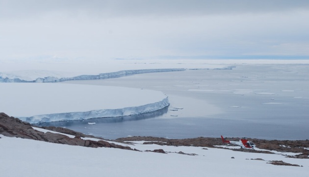 Photo of В Антарктиде нашли мумии пингвинов, которым может быть до 5000 лет