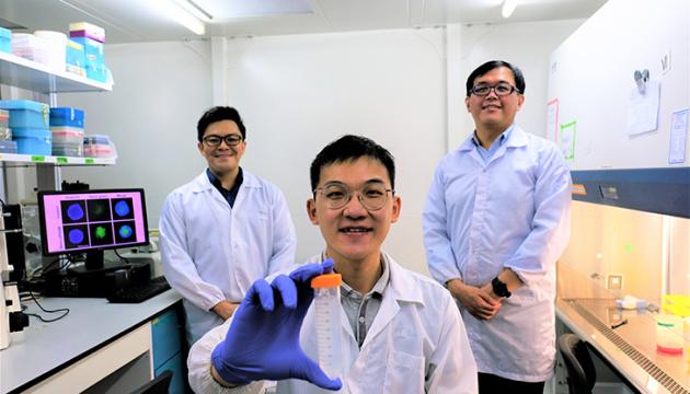 Photo of В Сингапуре разработали метод борьбы с раком с помощью наночастиц