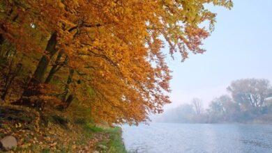 Photo of 30 октября: народный календарь и астровисник
