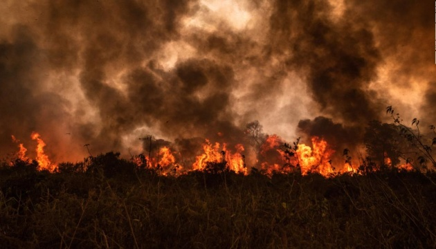 Photo of В Бразилии выгорела треть крупнейшего в мире болота Пантанал