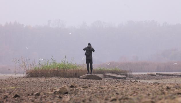 Photo of На Закарпатье развивают бьордвотчинг для карантинного досуга