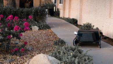 Photo of Косит газон, уничтожает сорняки и отгоняет енотов: в США создали робота-садовника