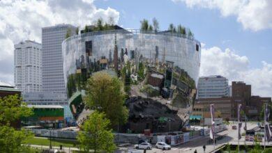 Photo of Роттердам запустил туристический AR-маршрут деревьями