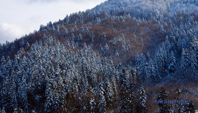Photo of На Львовщине создали национальный природный парк «Королевские Бескиды»