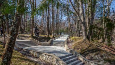Photo of Городской парк Трускавца получил статус государственного