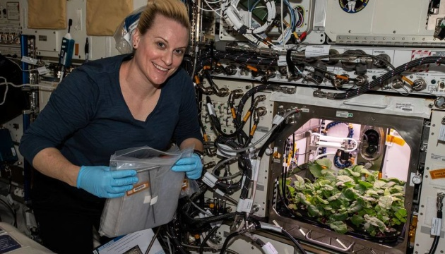 Photo of Астронавты NASA впервые собрали в космосе урожай редиса