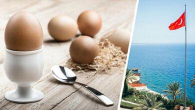 Photo of Турки настоятельно просят туристов есть яйца в отелях